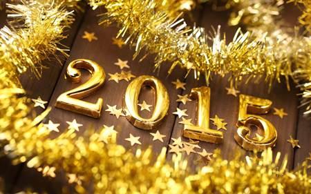 Pencapaian 2014 dan Sasaran 2015